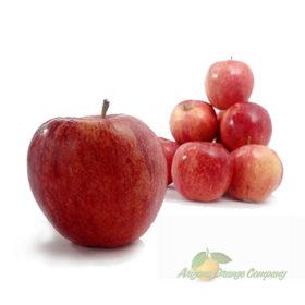 Organic Fuji Apples - 1 Dozen