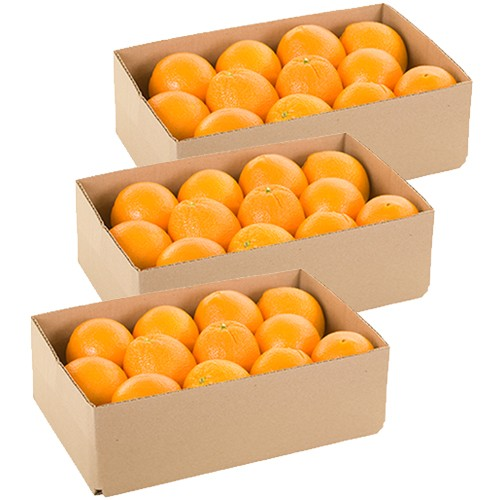 Monthly Navel Oranges Delivery - 20 lbs