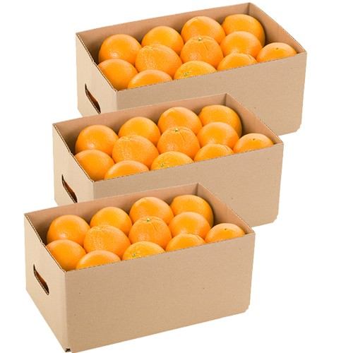 Monthly Navel Oranges Delivery - 30 lbs