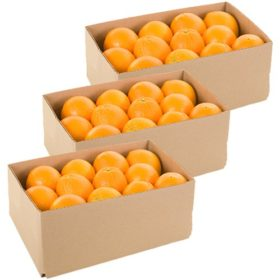 Monthly Navel Oranges Delivery - 40 lbs